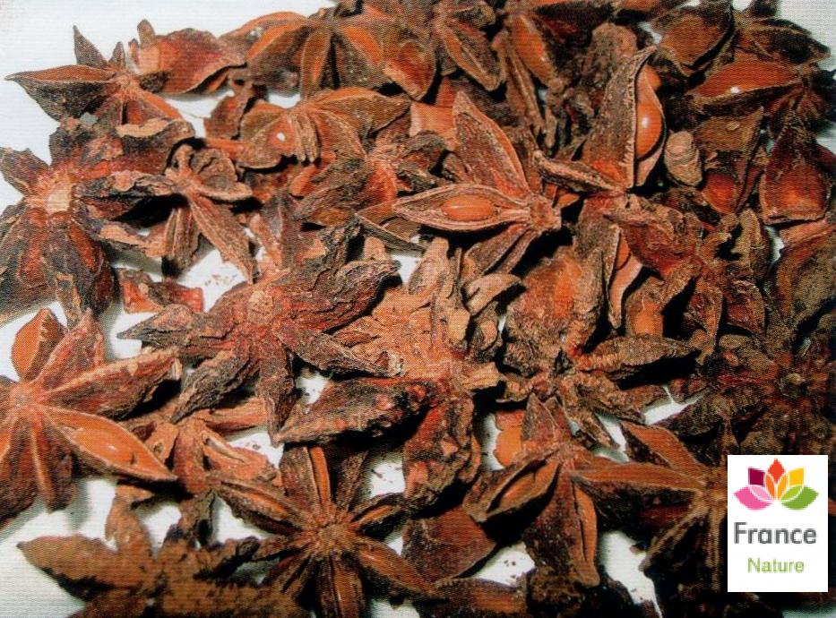 Gelules d anis etoile semence 220 mg illicium verum