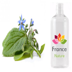HUILE VEGETALE de bourrache (Borrago officinalis)
