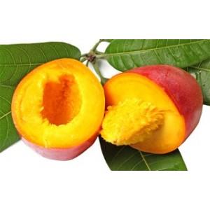 bv-mangue-50gr.jpg