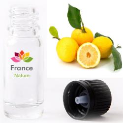 Citron pulpe