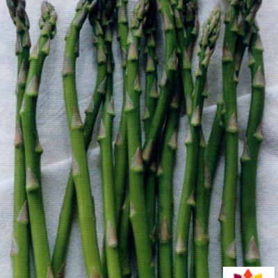 GÉLULES d'Asperge 220 mg, (Asparagus officinalis)